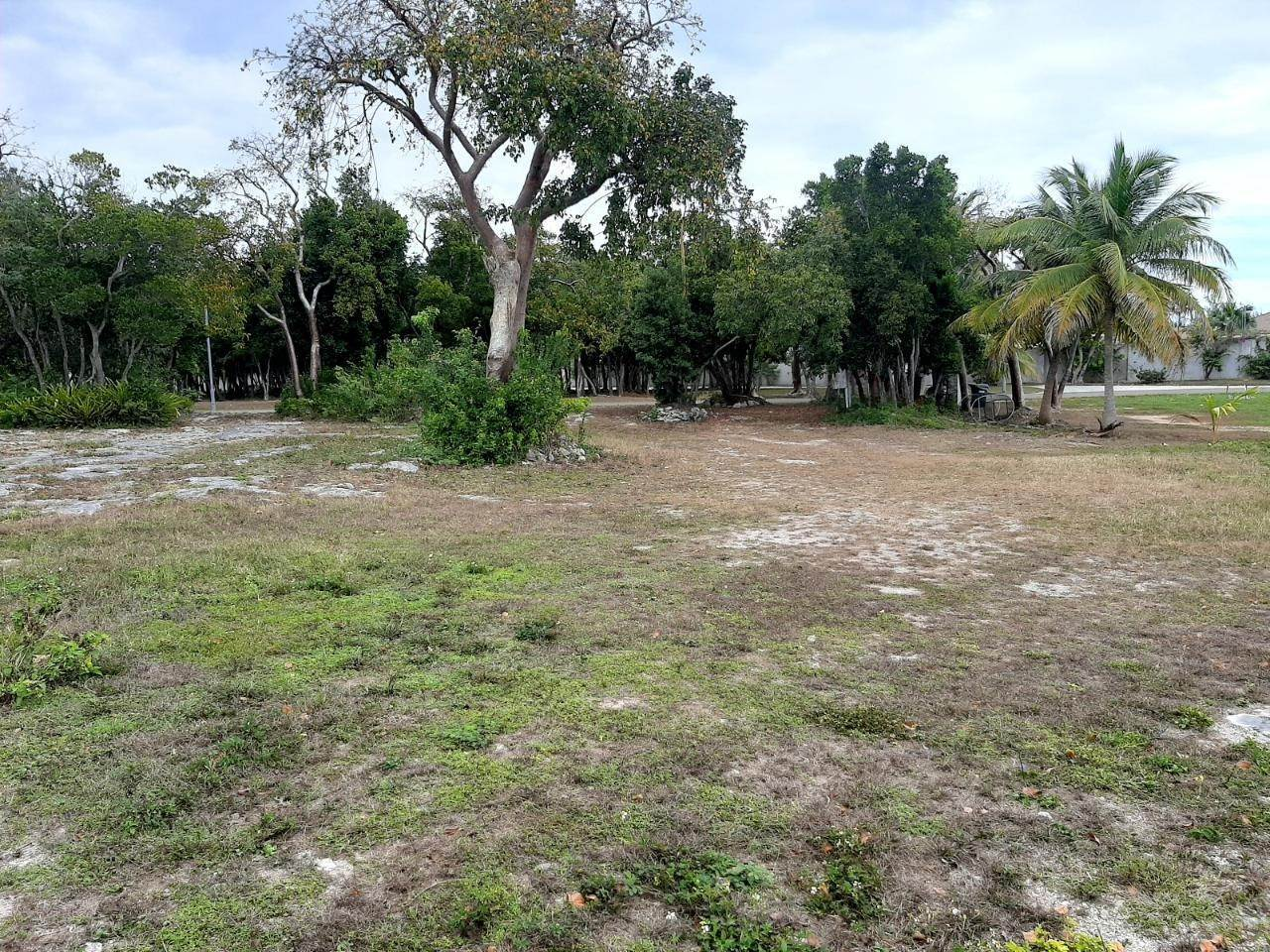 5. Lots / Acreage for Sale at Port New Providence, Yamacraw, Nassau And Paradise Island Bahamas