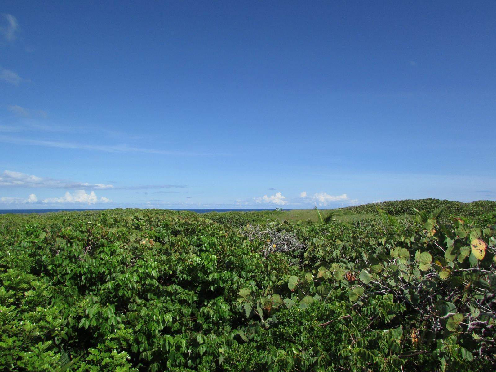 Land for Sale at Tilloo Cay, Abaco Bahamas