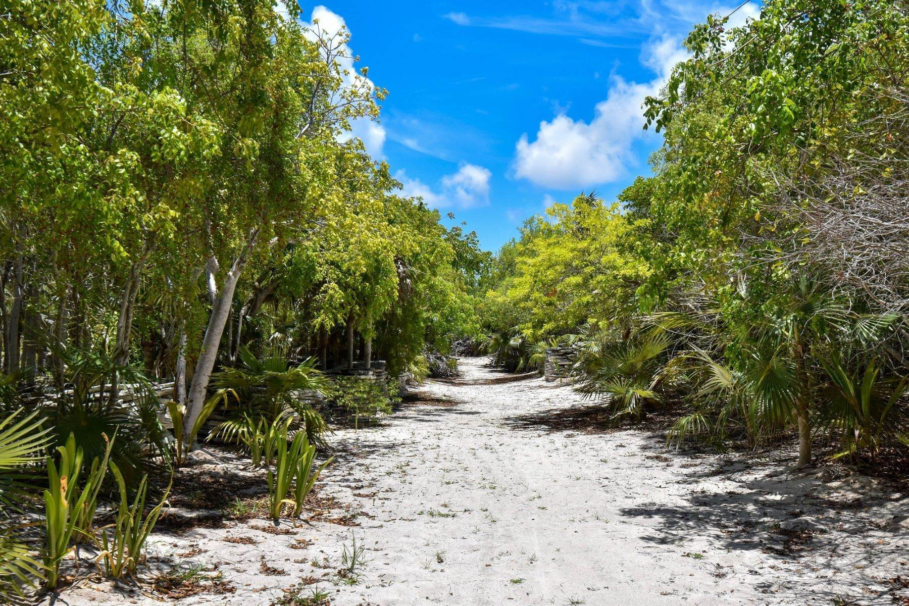 28. Single Family Homes for Sale at Allamanda Estate & Acreage Windermere Island, Eleuthera Bahamas