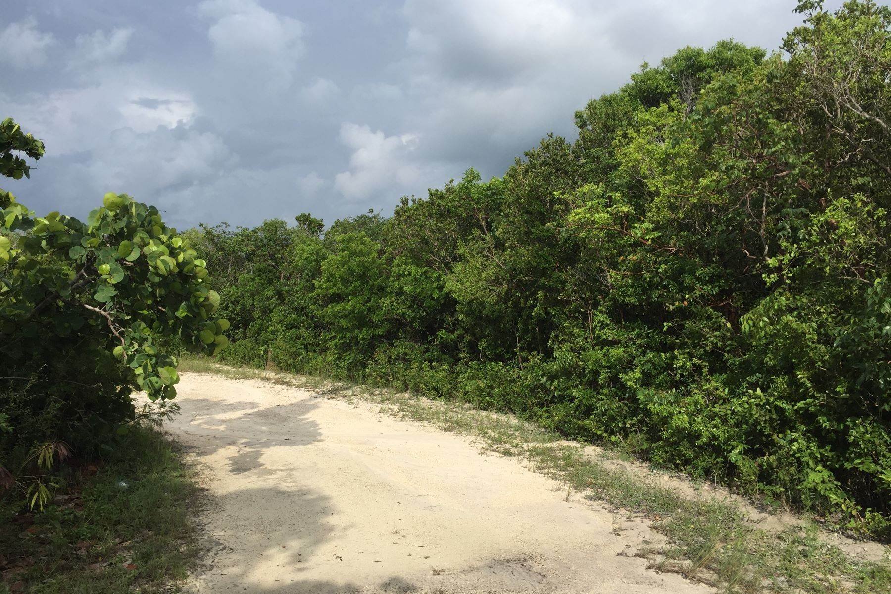 Land for Sale at Lot 24, Block 38, Section C Rainbow Bay, Eleuthera Bahamas